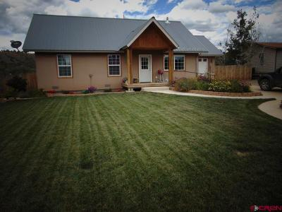 Mancos Single Family Home For Sale: 863 2nd Ave.