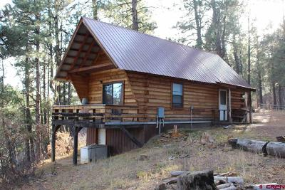 Pagosa Springs Single Family Home For Sale: 4081 Terry Robinson Road