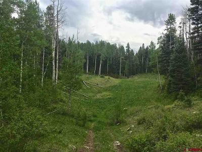 Durango Residential Lots & Land NEW: Aspen Drive