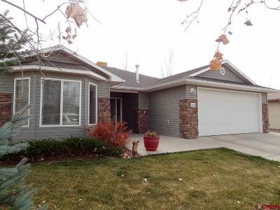 Montrose Single Family Home For Sale: 1228 Animas Street