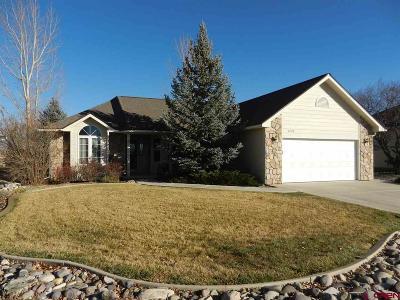 Montrose Single Family Home For Sale: 3729 Buffalo Lane