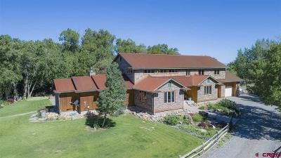 Montrose Single Family Home For Sale: 19033 Happy Canyon Road