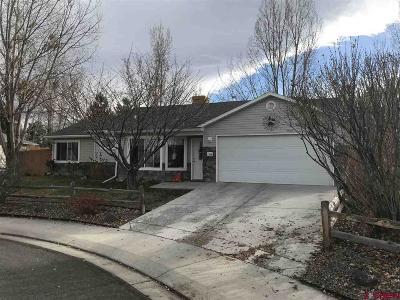 Montrose Single Family Home For Sale: 1348 Animas Street