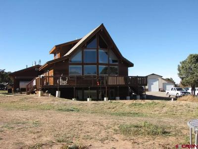 Ouray County Single Family Home For Sale: 35 Gypsy Lane