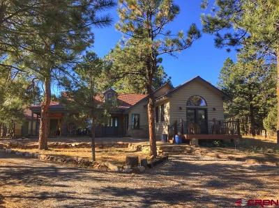 Ouray County Single Family Home For Sale: 145 Badger Trail South