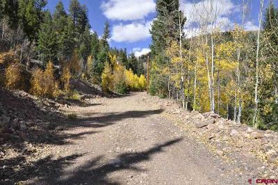 Creede Residential Lots & Land For Sale: 8339 Black Chief
