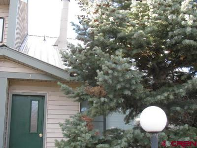 Pagosa Springs Condo/Townhouse NEW: 284 Tailsman Drive #1