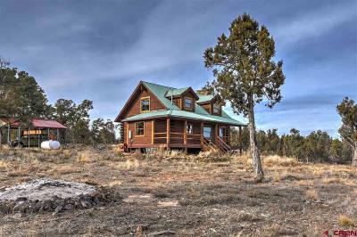 Ignacio Single Family Home For Sale: 500 Mesa Drive