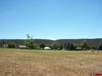 Cedaredge Residential Lots & Land For Sale: 1425 SE Stonebridge Drive