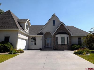 Montrose Single Family Home For Sale: 2851 Star Ridge Court