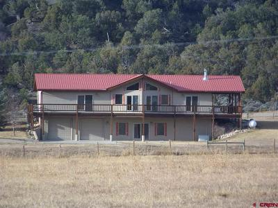 Mancos Single Family Home For Sale: 10375 Road 40.9