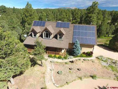 Durango Single Family Home For Sale: 40 Tomahawk Ridge