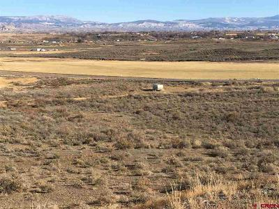 Montrose Residential Lots & Land For Sale: 5880 Road