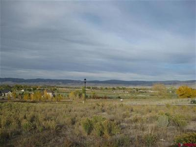 Montrose Residential Lots & Land For Sale: Crestview Drive
