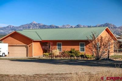 Pagosa Springs Single Family Home For Sale: 36 Packet Court