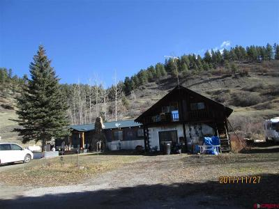 Pagosa Springs Single Family Home For Sale: 3821 E Hwy 160