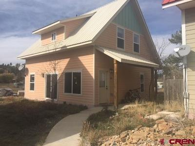 Pagosa Springs Single Family Home For Sale: 461 S 7th Street