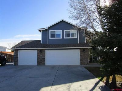 Montrose Single Family Home For Sale: 3102 Fox Park