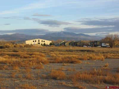 Montrose Residential Lots & Land For Sale: 1150 N San Juan Avenue