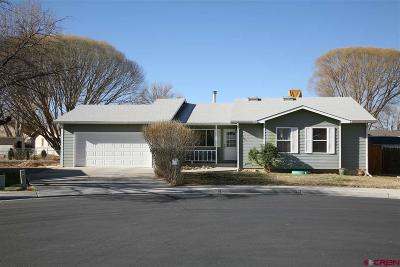 Delta Single Family Home For Sale: 1963 Columbine Court