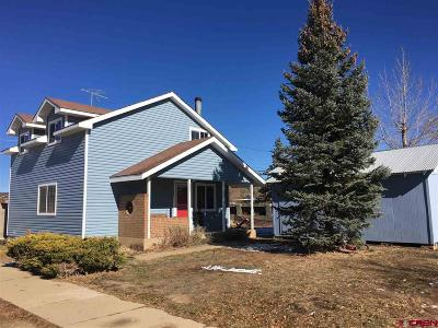 Mancos Single Family Home For Sale: 207 N Willow Street