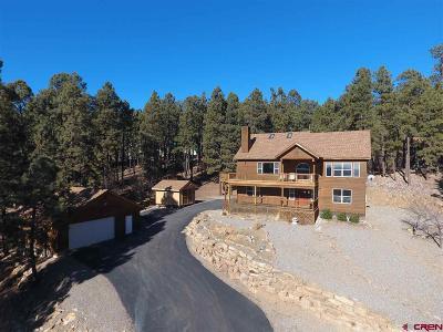 La Plata County Single Family Home For Sale: 891 Deer Ridge Drive
