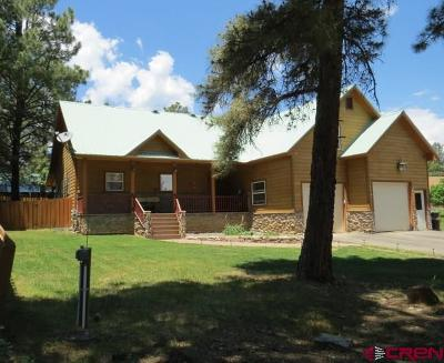 Pagosa Springs Single Family Home For Sale: 114 Dayspring Pl