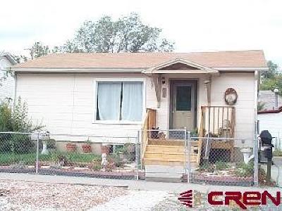 Montrose Single Family Home For Sale: 704 S Uncompahgre Avenue