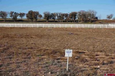Delta Residential Lots & Land For Sale: 2 Snaffle Bit Road