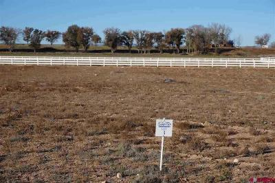 Delta Residential Lots & Land For Sale: 3 Snaffle Bit Road
