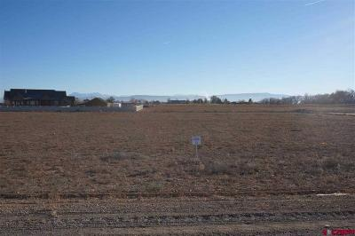 Delta Residential Lots & Land For Sale: 12 Snaffle Bit Road