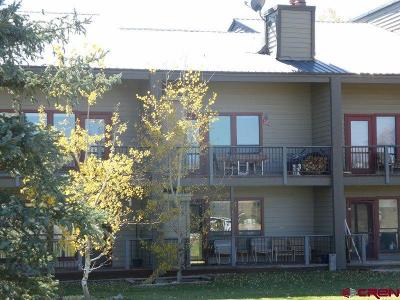 Pagosa Springs Condo/Townhouse For Sale: 164 Valley View Drive #3214