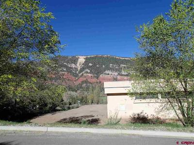 Durango Residential Lots & Land For Sale: Cr 203