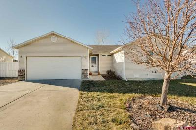 Montrose Single Family Home For Sale: 825 Cow Bell Court