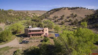 Hotchkiss, Crawford, Paonia Single Family Home For Sale: 13868 Runzel Gulch Road