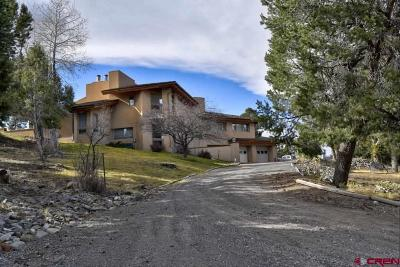 Ouray County Single Family Home For Sale: 741 Terrace Drive