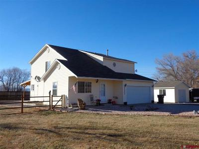 Montrose Single Family Home For Sale: 65350 Kail Court