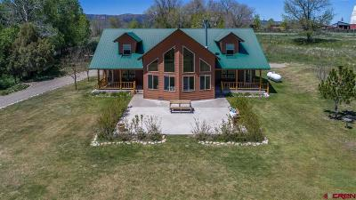 Mancos Single Family Home For Sale: 39259 Road J Road