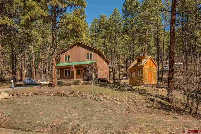 La Plata County Single Family Home For Sale: 113 Blue Ridge Circle