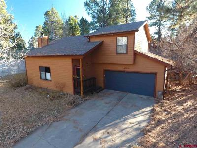 Durango Single Family Home For Sale: 266 Fir Drive