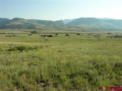 Creede Residential Lots & Land Back on Market: 207 Sunset Court