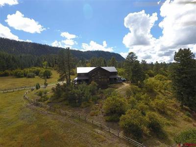 La Plata County Single Family Home For Sale: 1180 County Road 245