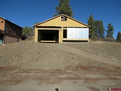 Pagosa Springs Single Family Home For Sale: 326 Saddle Circle
