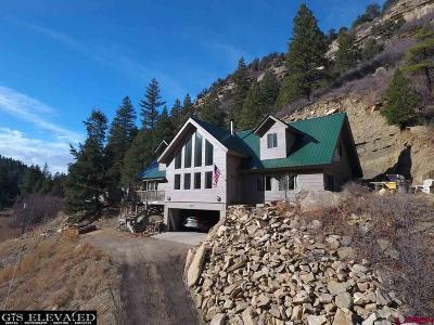 Durango Single Family Home For Sale: 387 Cr 141 Road