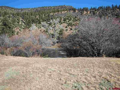 South Fork Residential Lots & Land NEW: Buck Ct.