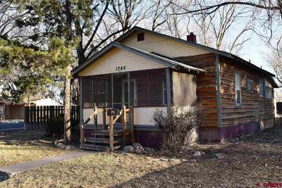 Montrose Single Family Home For Sale: 1246 S 2nd Street