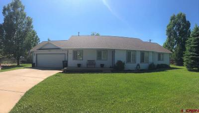 Bayfield Single Family Home NEW: 307 Meadows Circle