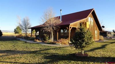 Delta Single Family Home NEW: 52494 Carnation Road