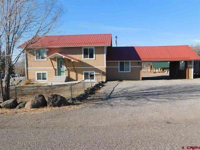 Single Family Home NEW: 460 7th Street