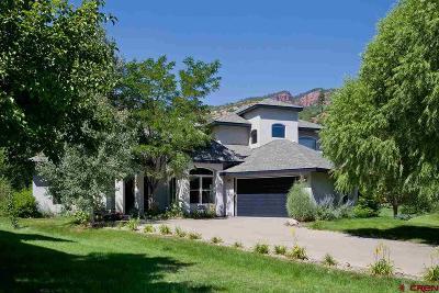La Plata County Single Family Home For Sale: 590 Horse Thief Lane